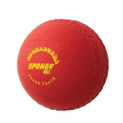 Kookaburra Sponge Cricket Ball