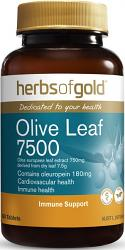 Herbs of Gold Olive Leaf 7500