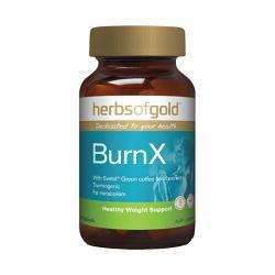 Herbs of Gold BurnX