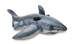 Intex Ride On Shark